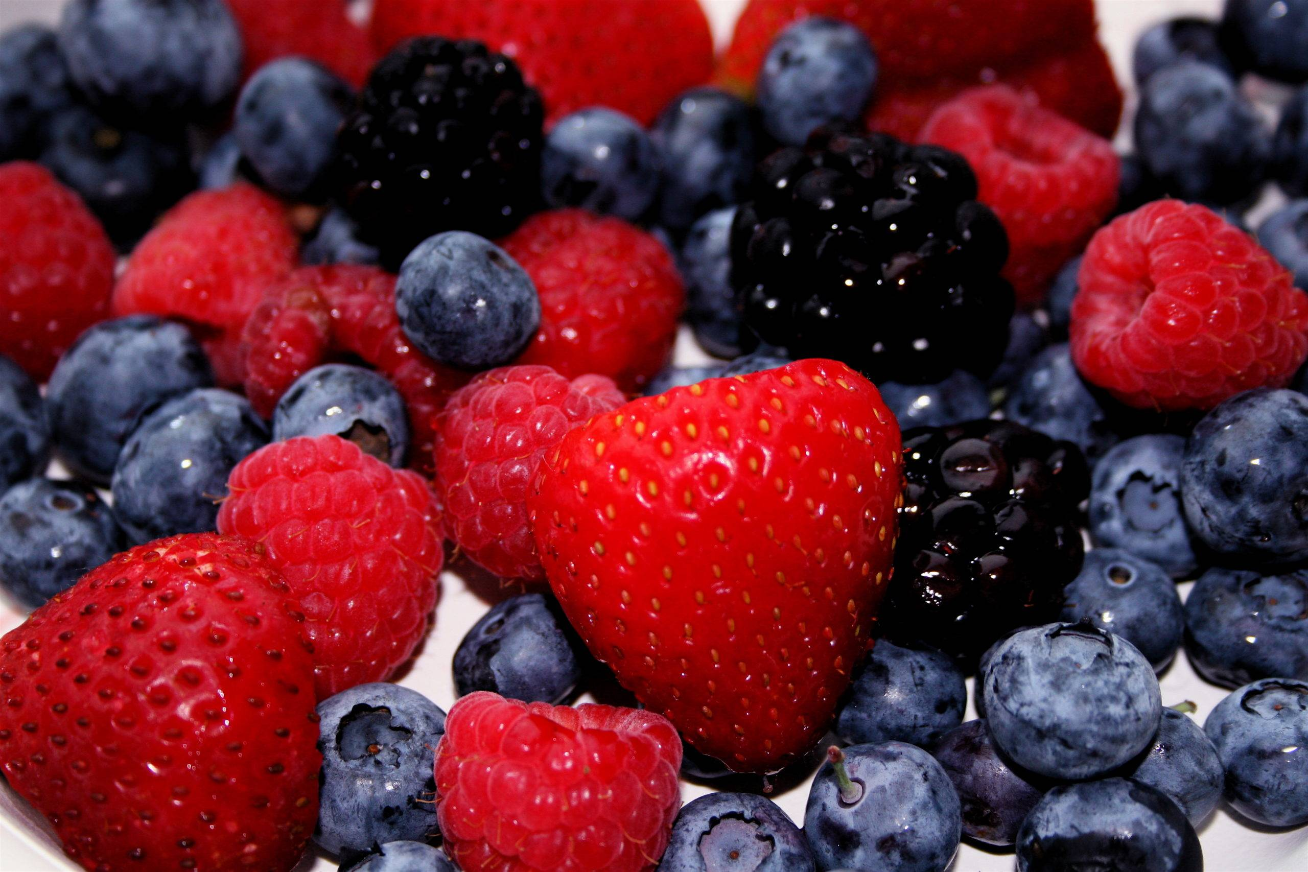 fruits-rouges micronutrition