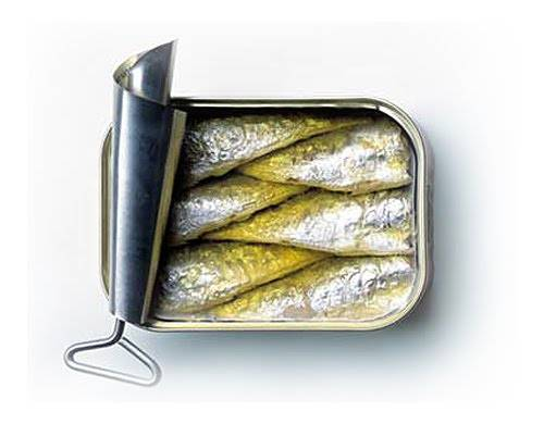 Chrononutrtrution sardine